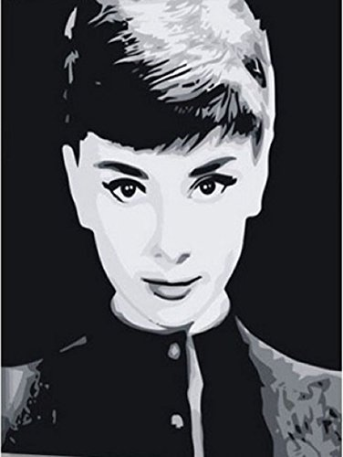 Greek Art Paintworks Paint Color By Number Kit,Audrey Hepburn styleC,16-Inch by 20-Inch