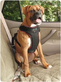 Solvit 62296 Pet Vehicle Safety Harness,