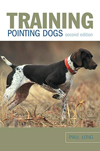 Training Pointing Dogs (Best Pointing Dog Breeds)
