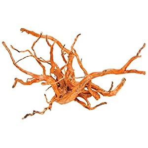 """Pisces AM-GOLD012 12"""" Small Spiderwood, Varies 43"""