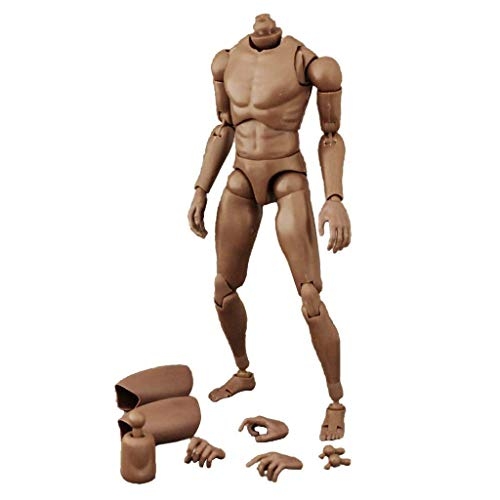ZYAQ 1/6 Scale Narrow Shoulder Action Figure African American Male Muscular Body Toys Doll for TTM18 TTM19 Hot Toys ()