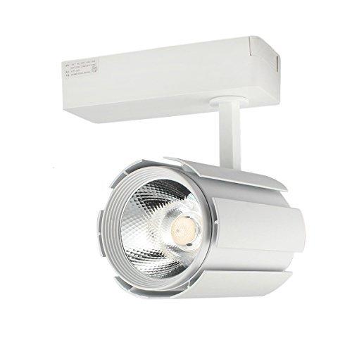 GALYGG LED Track Lighting Heads Kit 30W 3000LM 3000K Warm White, 3 - Wire Lighting Fixtures Spotlight, COB Light Source - 1 Pack