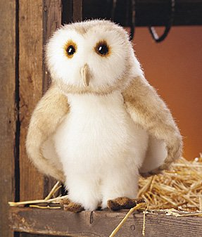 and Puppet (Barn Owl Puppet)