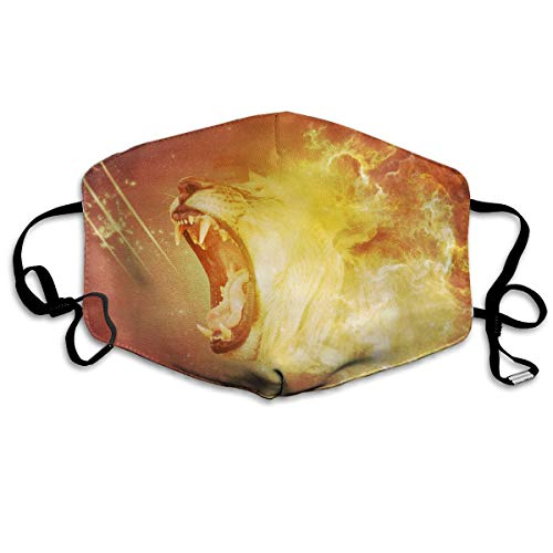 Lojaon Washable Face Mouth Cover Mask - Warm Respirator Fire-lion-wallpapers-1920x1200-for-iphone-5 Print Earloop Mask for $<!--$12.57-->