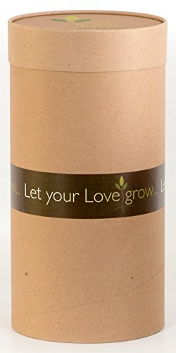 Let Your Love Grow - An Environmentally Safe Organic Mixture Designed to Blend with Cremated Remains (Ashes) to Create Your Personal Memorial for that Special Someone, Pet or Person. XX-Large Kit (Biodegradable Urns For Ashes With Tree Seed)