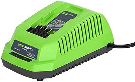 Greenworks Tools 40v Lithium Ion Battery Charger Baumarkt