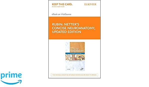 Netter S Concise Neuroanatomy Updated Edition Elsevier Ebook On