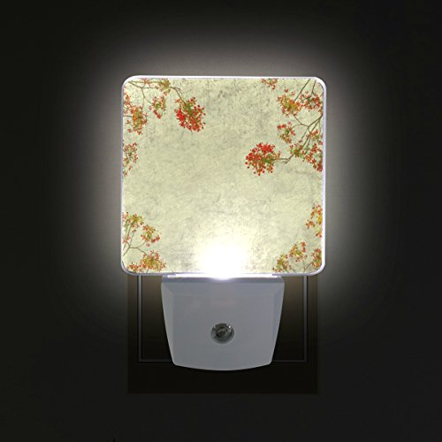 GIOVANIOR Peacock Flowers On Tree With Old Antique Vintage Pattern Plug in Dusk to Dawn Light Sensor LED Night Light Wall Light for Bedroom, Bathroom, Hallway, Stairs, Energy Efficient by GIOVANIOR
