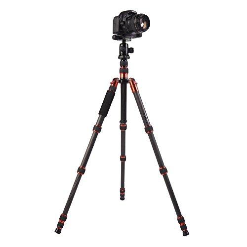 GT-2505x8.C調整可能なポータブルカーボンファイバー三脚、B-1アルミボールヘッド互換Canon NikonソニーDSLRカメラ (SKU : S-DCA-0419A)   B07PFK1ZYJ