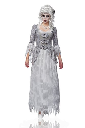 Costume Culture Women's My Spirit Lady Ghost Costume, Grey, Small (Marie Antoinette Halloween Costume)