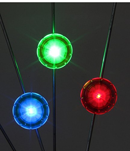 BlueSunshine 6 Pcs Bright LED Bicycle Bike Mini Spoke Lights Colorful Wheel Lights (2 x Red, 2 x Blue, 2 x (Mini Spoke)