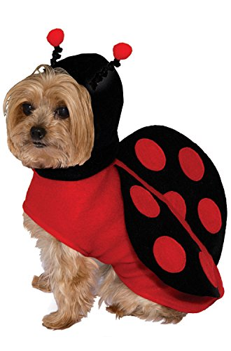 Forum Novelties Kid's Pet Dog Cute Dress Up Halloween Costume Lady Bug Red Black Childrens Costume, Multi, Small -