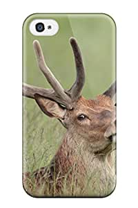 Fashion AlW-6021pTleDlEL Case Cover For Iphone 4/4s(reindeer)