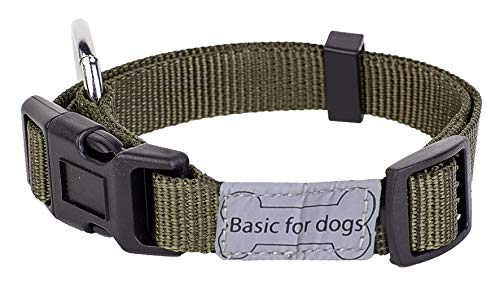 Wouapy Basic Line Collar for Dog, 25 mm Width, Neck Size 44/65 cm, Kaki
