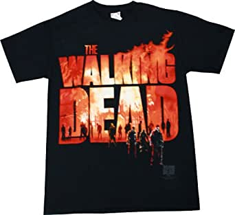 The Walking Dead Fire Logo Men's Black T-Shirt, Small