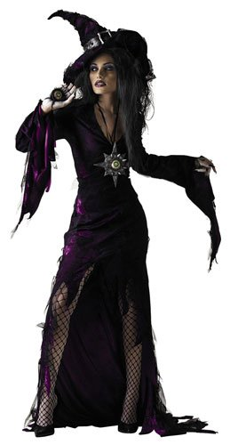 Disguise Unisex Child Sorceress, Purple, JR (7-9) Costume