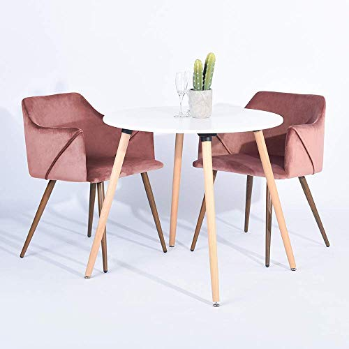 HOMY CASA Modern Velvet Dining Room Chairs, Large Fabric Side Chairs with Metal Leg for Kitchen Dining Room Bedroom Leisure Chairs Set of 2, Rose