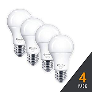 HAYLO Emergency Power Failure LED Light Bulb - Safety During Power Outage - Lights Up Automatically When Power Fails - Rechargeable Battery - Works Like Ordinary Bulbs - 3500K Hurricane 9W 120V 60W