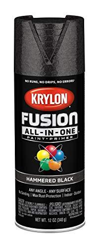 Krylon K02782007 Fusion All-in-One Spray Paint, Black