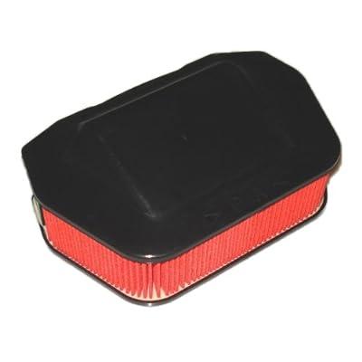 Hiflofiltro HFA4919 Premium OE Replacement Air Filter: Automotive