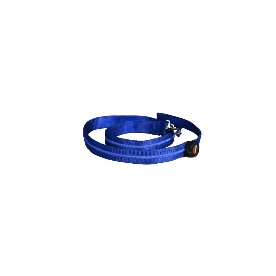 Aviditi AL107 L LED Lighted Dog Leash, Blue with Blue LED Lights, Large