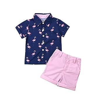 Toddler Kids Baby Boy Gentleman Suits Short Sleeve Flamingo Shirt Top + Pink Shorts 2Pcs Summer Outfits Set - Pink - 2T / 3T