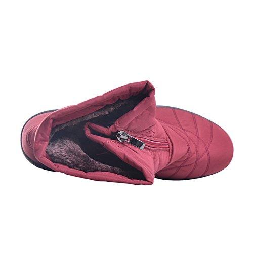 Dear Time Women Winter Snow Boots Warm Cotton Platform Ankle Shoes Red FgLLs4
