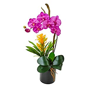 Artificial Flowers -Purple Orchid and Bromeliad in Glossy Black Cylinder 80