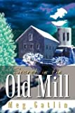 img - for [(Secret in the Old Mill)] [By (author) Meg Gatlin] published on (July, 2003) book / textbook / text book