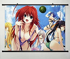 Home Decor High School DXD New Cosplay Wall Scroll Poster Rias Gremory
