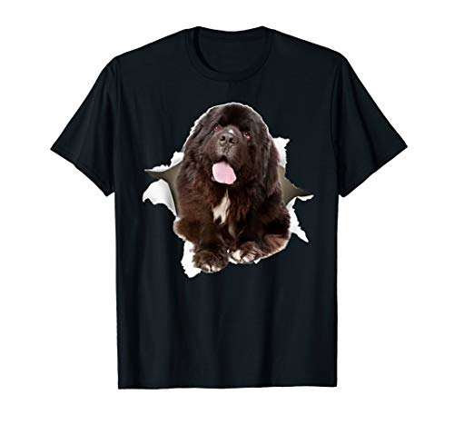 (Newfoundland Torn T Shirt, Newfoundland dog torn shirt)