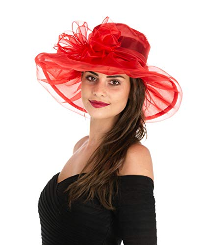 Saferin Women 's Organza Church Kentucky Derby Fancy Hat Red with Bowknot Free size