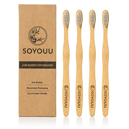 Natural Bamboo Toothbrush Pack Biodegradable
