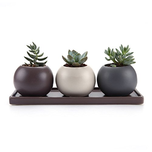 T4U 7.5CM Ceramic Cameo Double Layer Howllow Design Succulent Plant Pot/Cactus Plant Pot With Saucer Full colors Package 1 Pack of 3