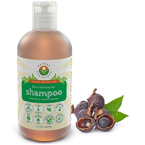 Raw and Wild Soap Nut Shampoo