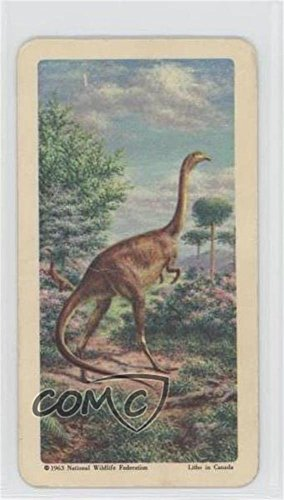 Ornithomimus (Trading Card) 1963 Brooke Bond Red Rose Dinosaurs and Other Prehistoric Animals - Tea [Base] - American Blue Backs #11 from Unknown