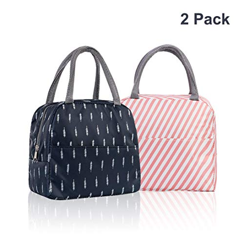 Paper Bagbag - (2Pack) Lunch Bags, Insulated Lunch Box, Fashionable Lunch Tote Bag with Preposition Bag Zipper Closure for Women Men School Work Picnic Hiking Beach Fishing or Travel (Navy Blue, Pink)