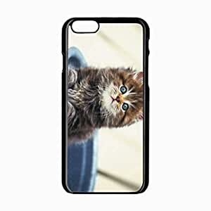 iPhone 6 Black Hardshell Case 4.7inch kitten sitting furry Desin Images Protector Back Cover
