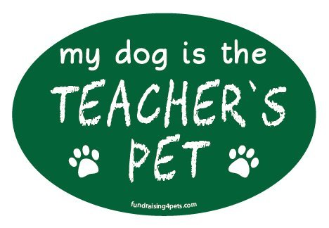 My Dog is the Teacher's Pet oval magnet - green