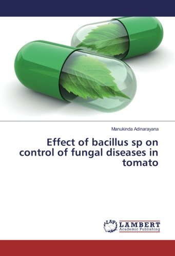 effect-of-bacillus-sp-on-control-of-fungal-diseases-in-tomato