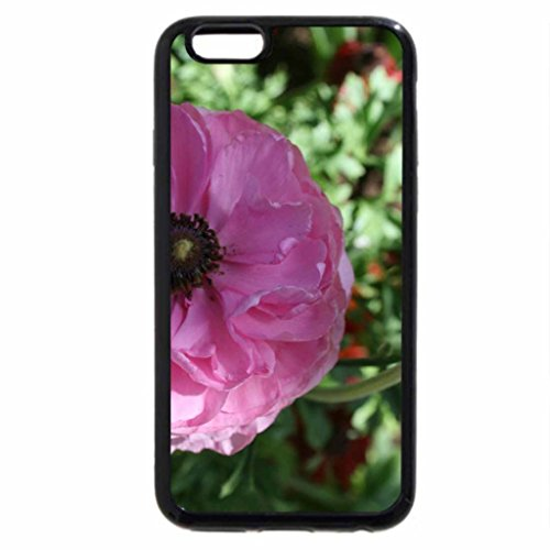 iPhone 6S / iPhone 6 Case (Black) Spring May Flowers 43