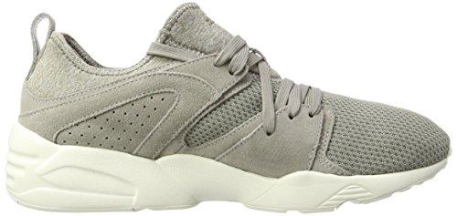 Rock Ridge scarpe per Ct White Puma Blaze miste ginnastica Whisper beige da adulti basse 5PvqYwqE
