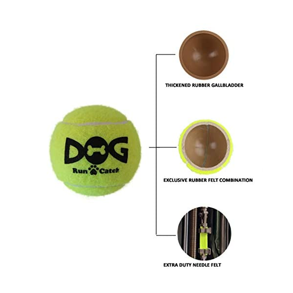 insum Tennis Ball for Dog Pack of 12 Colorful Easy Catching Pet Dog Ball 7