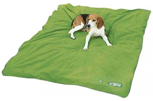 Guardian Gear Insect Shield Pet Blanket, 56 by 48-Inch, Green