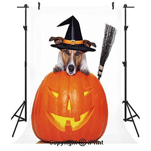 Halloween Photography Backdrops,Witch Dog with a Broomstick on Large Pumpkin Fun Humorous Hilarious Animal Print,Birthday Party Seamless Photo Studio Booth Background Banner 6x9ft,Multicolor