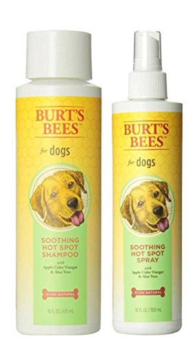 Top 8 best vinegar spray for dogs