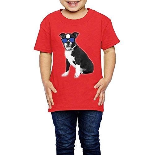 Boston Kids T-shirt - Lichang Girls' Tee Short Sleeve Cool Boston Terrier Dog Crew Classic 2-6 Years