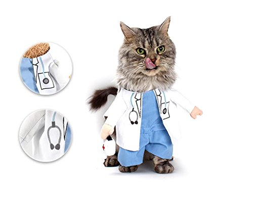 PetBoBo Pet Dog Cat Halloween Costume Doctor Costume Dog Jeans Clothes Cat Funny Apperal L (Cat Soft Costume)