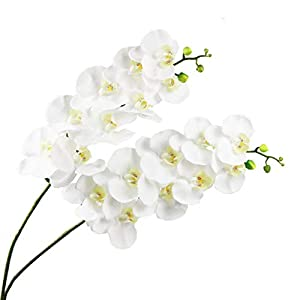Lanldc 38 Inch Artificial Phalaenopsis Flowers Branches 9 Head Real Touch Orchids Flowers for Home Office Wedding Decoration,Pack of 2 (White)