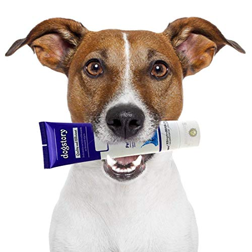 Beef-flavored Dog Toothpaste --- Make Tooth Brushing a Joyful experience - All-Round Dental Hygiene - No More Expensive Dental Services at the Vet - Keeps Teeth Clean, Reduce Plaque - Dog Approved